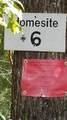 236 Sandy Point Drive - Photo 3
