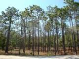 2711 Shady Pine Circle - Photo 1