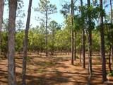 2711 Shady Pine Circle - Photo 8