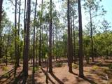 2711 Shady Pine Circle - Photo 9