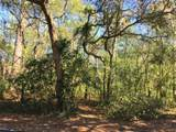 331 Pine Valley Drive - Photo 2