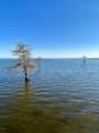 395 Lake Road - Photo 1