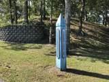10201 Corree Cove Drive - Photo 6