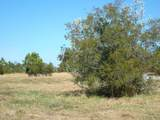 261 & 301 Cabin Creek Road - Photo 6