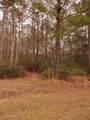 1601 Poplar Branch Trail - Photo 3