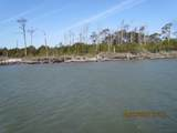 0000 Browns Island - Photo 1