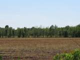 4930 Swamp Fox Highway - Photo 9