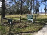 203 Long Creek Drive - Photo 3