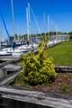 9123 Riverview Drive - Photo 32