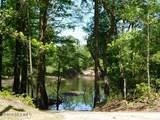Lot 25 Black River Lane - Photo 12