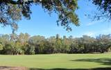15 Sabal Palm Trail - Photo 2