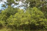 2526 Lightwood Drive - Photo 2