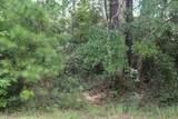 2526 Lightwood Drive - Photo 4