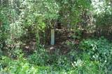 2526 Lightwood Drive - Photo 5