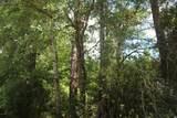 2526 Lightwood Drive - Photo 6