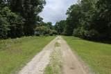 2527 Lightwood Drive - Photo 7