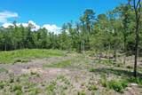 103 Ten Tall Trail - Photo 8