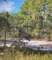 168 Acres Off Old Georgetown Rd - Photo 1
