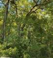 168 Acres Off Old Georgetown Rd - Photo 3