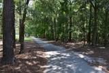 1617 Grandiflora Drive - Photo 3