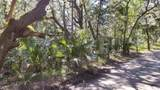 60 Dowitcher Trail - Photo 11