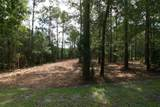 235 Peterson Creek Road - Photo 5