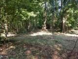1001 Futch Creek Road - Photo 3