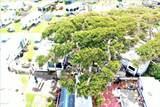4021 Island Drive - Photo 20