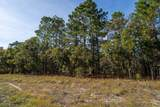 Lot 31 Bear Branch Drive - Photo 11
