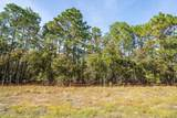 Lot 31 Bear Branch Drive - Photo 8