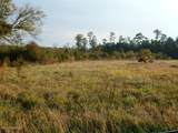249 Acres Old Fayetteville Road - Photo 12