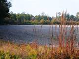 249 Acres Old Fayetteville Road - Photo 15