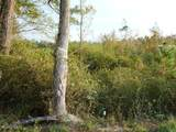 249 Acres Old Fayetteville Road - Photo 17