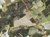 249 Acres Old Fayetteville Road - Photo 8