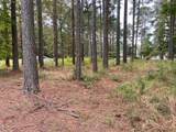 439 Cypress Landing Trail - Photo 6