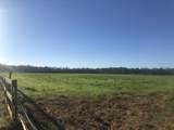 813 Butler Farm Road - Photo 2