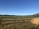 813 Butler Farm Road - Photo 3