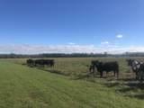 813 Butler Farm Road - Photo 6