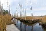 10167 Creekside Drive - Photo 43