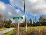 118 Twelve Oak Drive - Photo 3