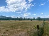 0000 Freeman Mill Road - Photo 3