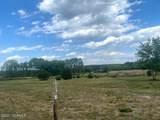 0000 Freeman Mill Road - Photo 5