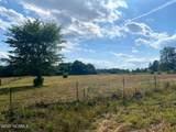 0000 Freeman Mill Road - Photo 8