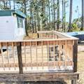 4414 Sea Pines Drive - Photo 27