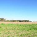 4803 Andrew Jackson Highway - Photo 11