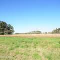 4803 Andrew Jackson Highway - Photo 12