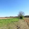 4803 Andrew Jackson Highway - Photo 13