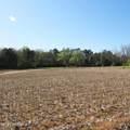 4803 Andrew Jackson Highway - Photo 14