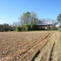 4803 Andrew Jackson Highway - Photo 15