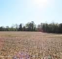 4803 Andrew Jackson Highway - Photo 16